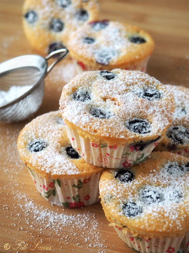 Muffins con gocce di cioccolato e mirtilli