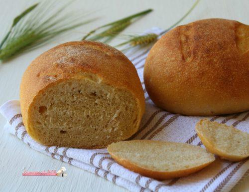 Pane di Kamut