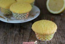 Muffin al limone, ricetta facile senza burro