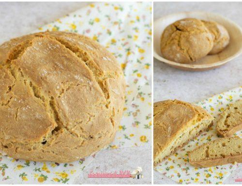 Pane di Kamut senza lievito, con bicarbonato