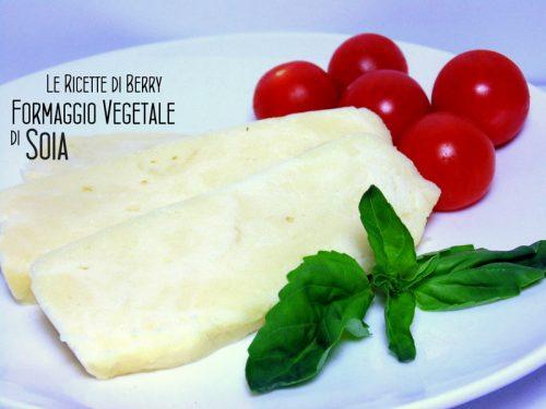 Formaggio Vegetale di Soia tipo Mozzarella DIY