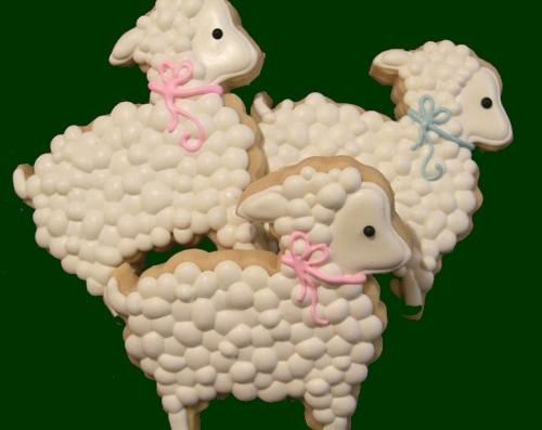 Cookie Cake Dallaa