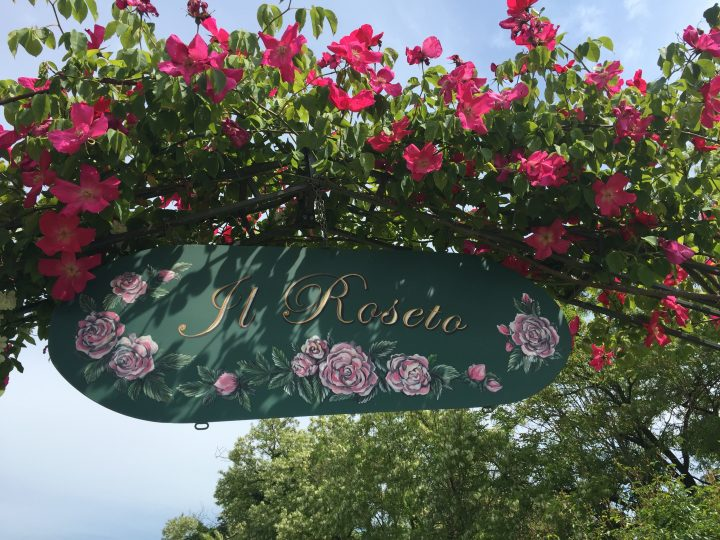una passeggiata tra le rose