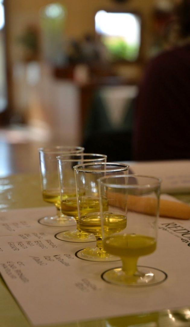 degustazione-prime-olive