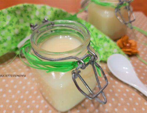Ricetta latte condensato fatto in casa