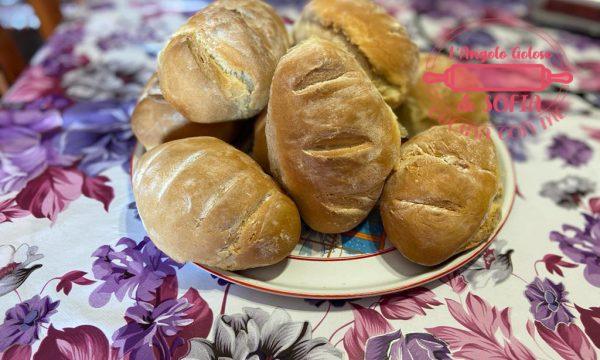 PANE FATTO IN CASA – I PANINI morbidi e fragranti, ricetta Bimby e Non