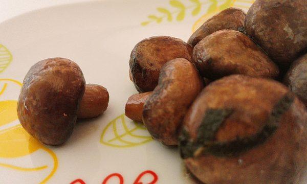 Champignon salvia e aglio