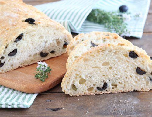 Pane alle olive nere e timo