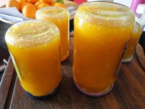 marmellata di kumquat mandarini cinesi