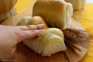 Panini al latte anche Bimby – Pane sofficissimo