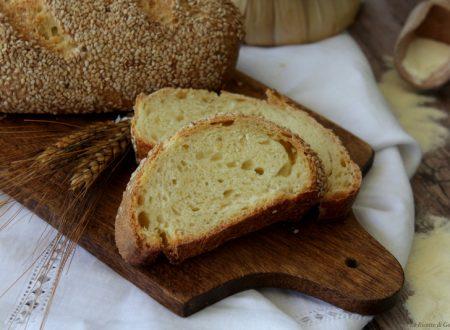Pane siciliano con sesamo – Con Lievito madre o di birra