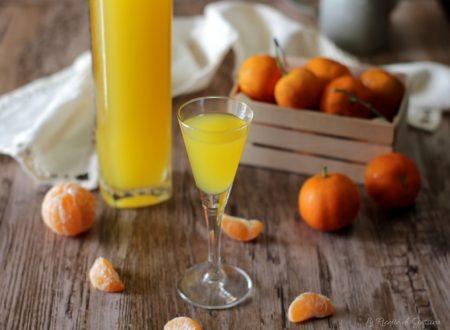 Liquore di clementine – Anche Bimby