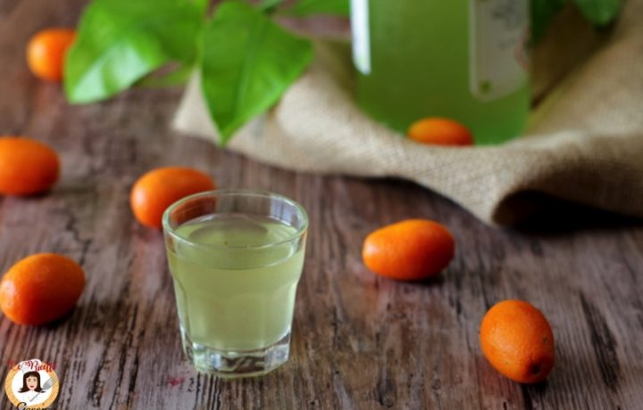 Liquore di Mandarini cinesi – Anche Bimby