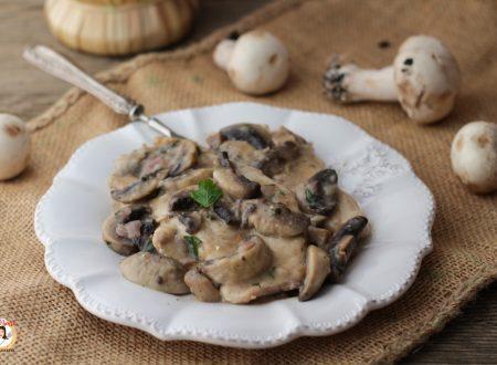 Pollo ai funghi e vino bianco – Scaloppine cremose con petto di pollo