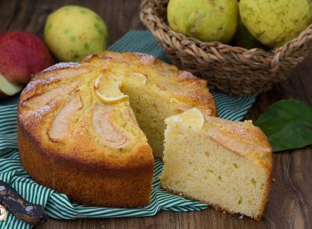 Pan di limone alle mele frullate – Anche Bimby