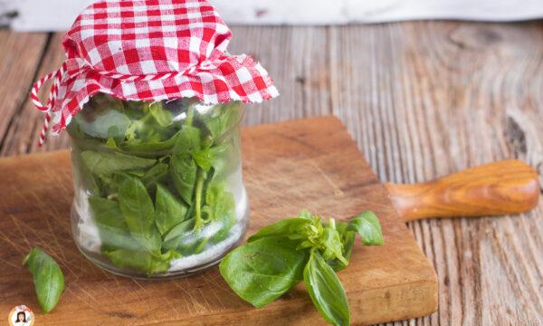 Conservare in frigorifero le erbe aromatiche – Come mantenerle fresche a lungo
