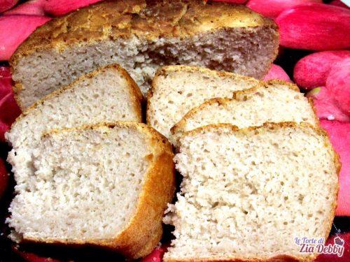 Pane fatto in casa con lievito madre senza glutine,  con fagioli