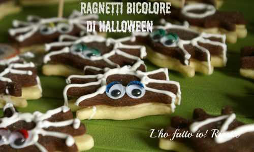 Biscotti ragnetto per halloween