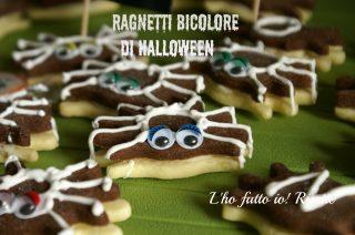 Ragnetti bicolore di halloween