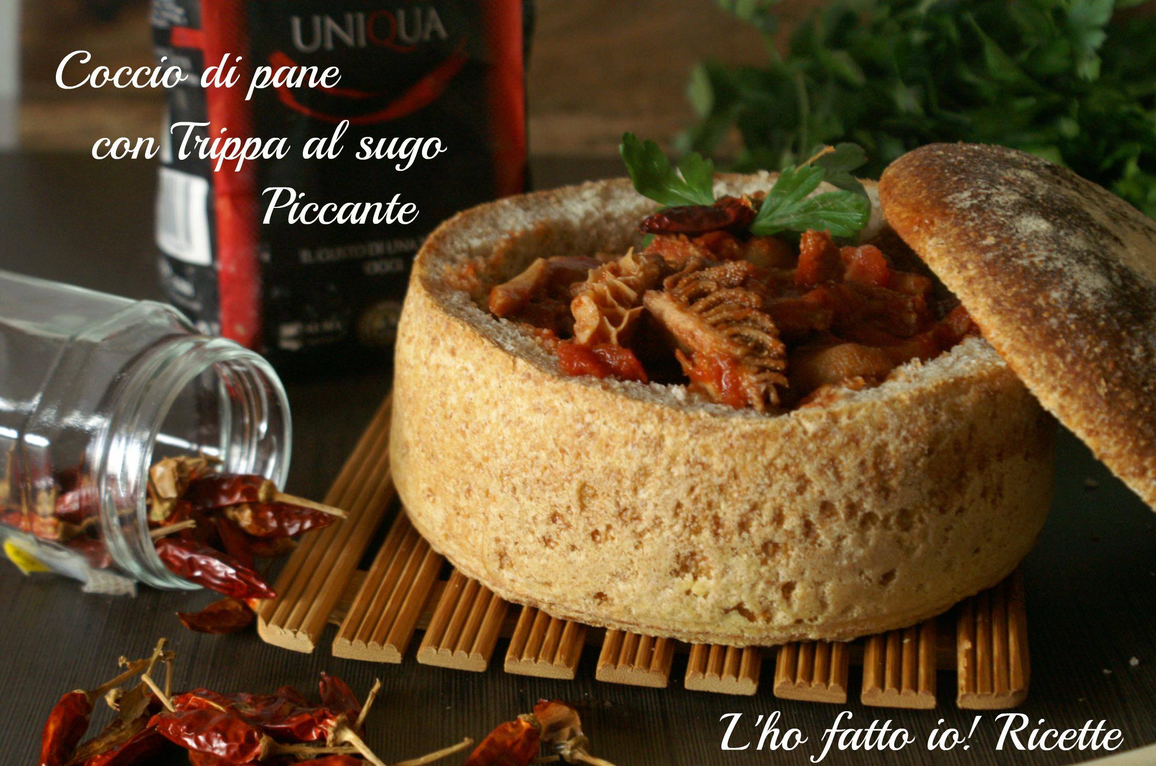 Coccio di pane con trippa al pomodoro