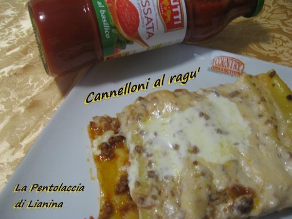 cannelloni al ragu'