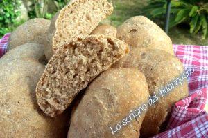 Panini rustici con farina di farro