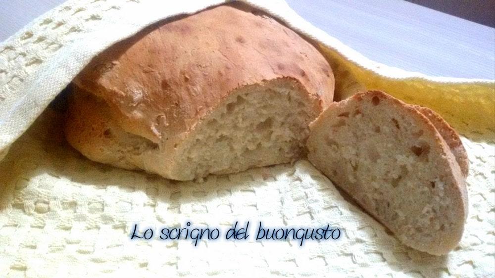 Filone di pane veloce senza impasto