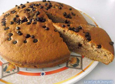 Torta  con gocce di cioccolato e cannella