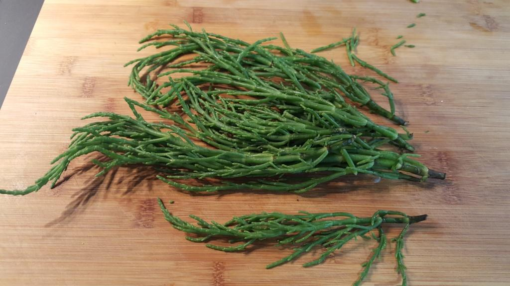 Salicornia (asparago di mare)