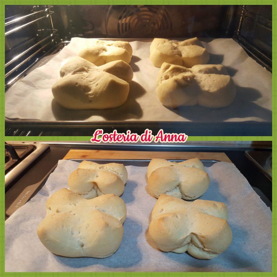 Cottura dei panini