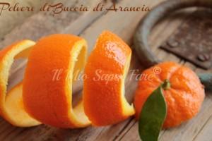 Polvere di buccia di arancia  Buccia di arancia essiccata