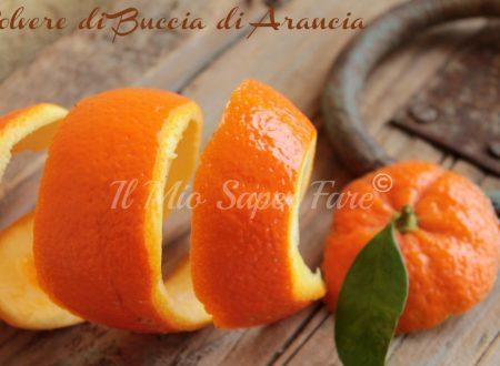 Polvere di buccia di arancia |Buccia di arancia essiccata