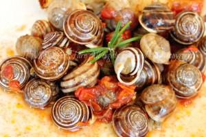 Lumache pomodoro e cipolla ricetta calabrese