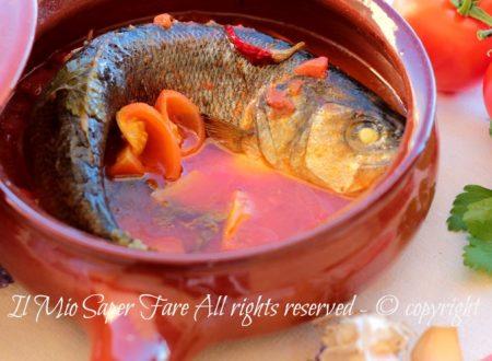 Spigola all acqua pazza ricetta facile gustosa e leggera