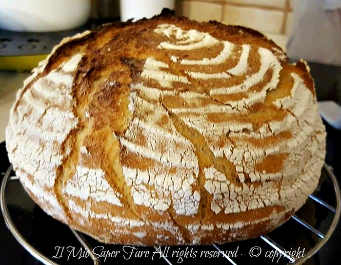 Pane con latticello ricetta Bimby | Buttermilch Brot il mio saper fare