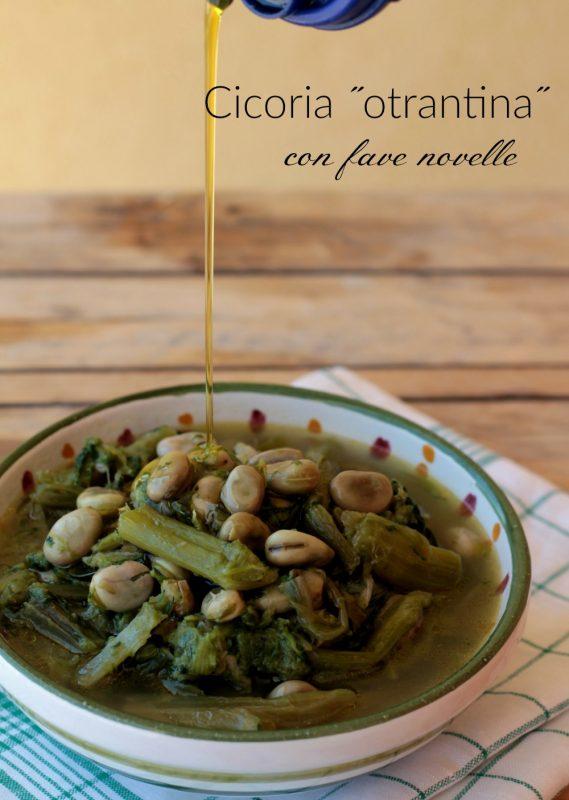 Cicoria otrantina con fave novelle ricetta tipica pugliese il mio saper fare
