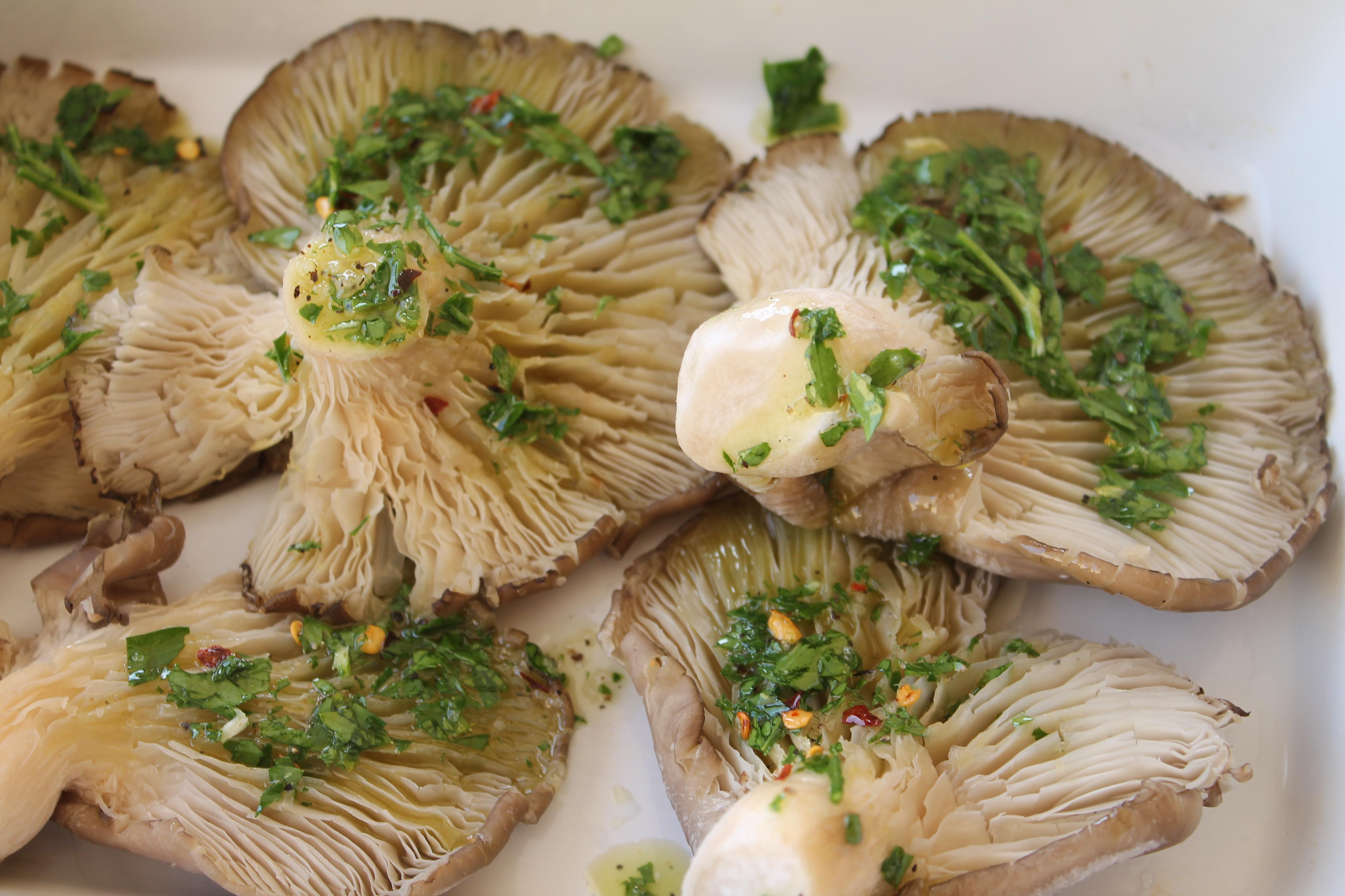 Funghi pleurotus al forno ricetta facile leggera e gustosa for Cucinare funghi