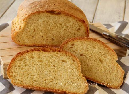 Pane di semola di grano duro rimacinata ricetta infallibile