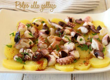 Polpo alla gallega ricetta polpo alla galiziana o pulbo à feira