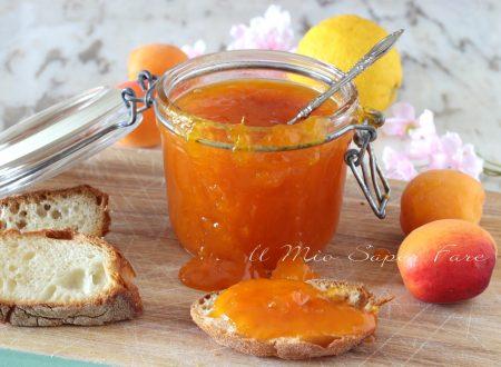 CONFETTURA di ALBICOCCHE ricetta MARMELLATA di FRUTTA fresca fatta in casa
