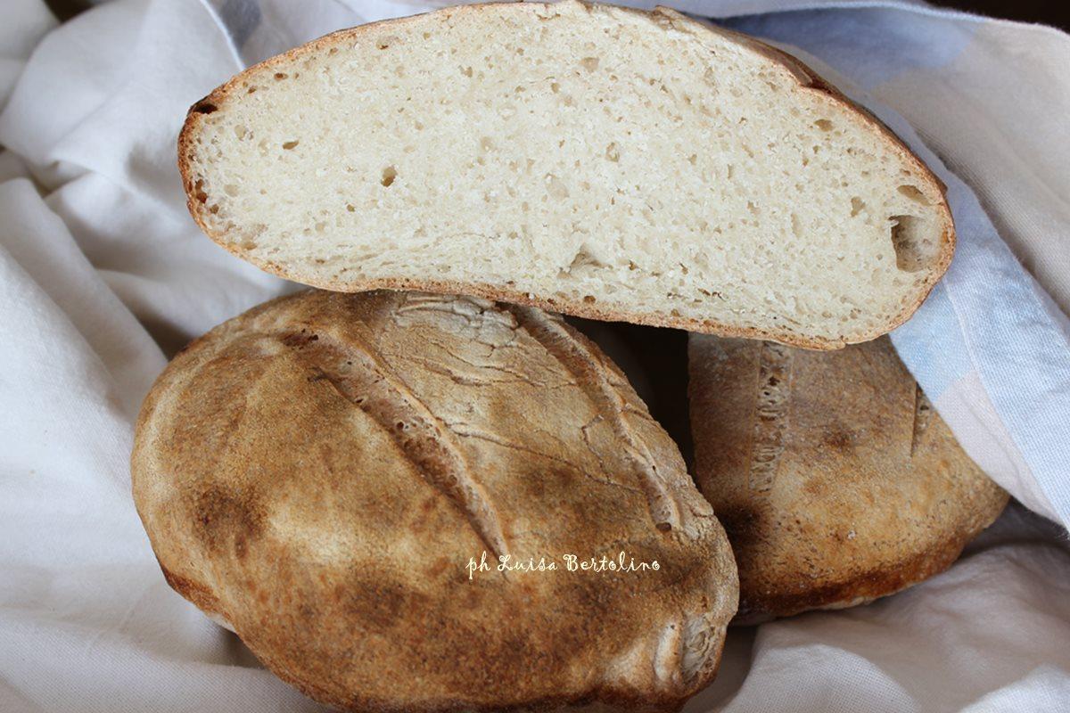 Pane cafone con lievito madre