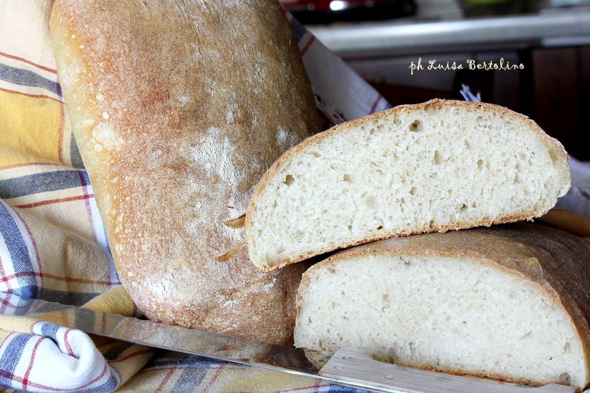 Ciabatta di pane con lievito madre