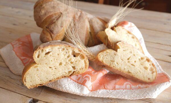Pane tipo Cornetto di Matera