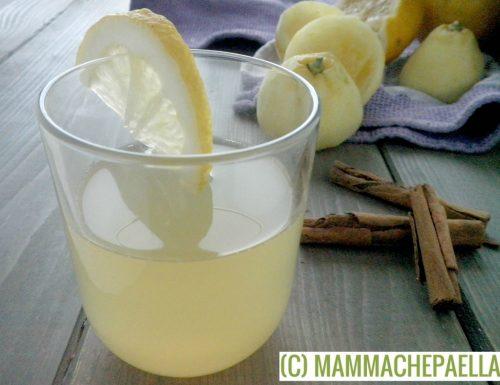 Infusione di cannella e limone da bere durante il giorno