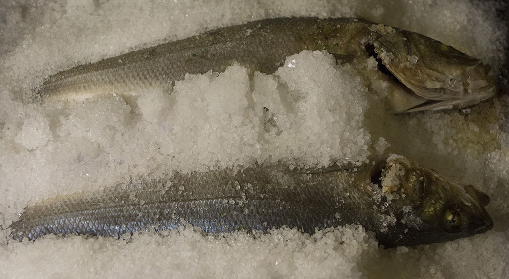 Branzino in crosta di sale al forno