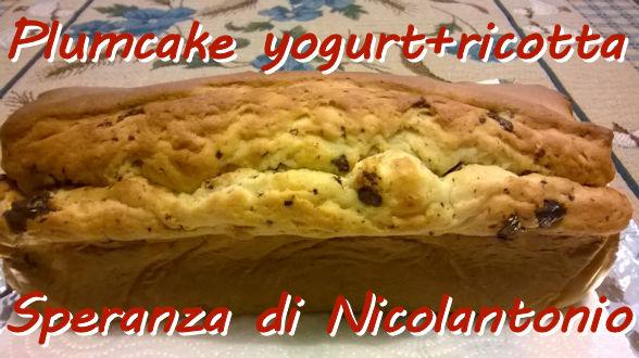 Plumcake yogurt ricotta e mirtilli rossi Speranza Di Nicolantonio mod