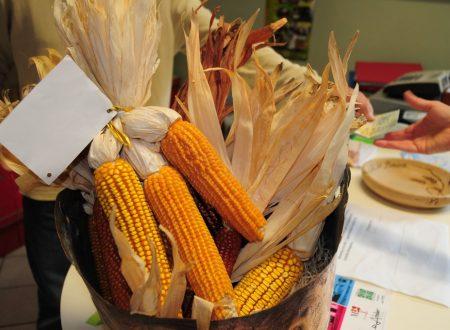 Dal mais alla polenta, passando dal Mugnaio