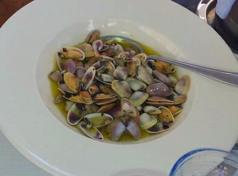 Un delizioso piatto di Telline profumatissime al Verrmentino,un antipastino appetitoso amato da grandi e piccini