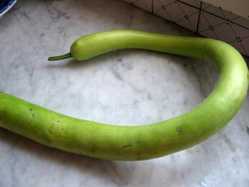 La pasta con i tenerumi ricetta palermitana ricette for La zucchina