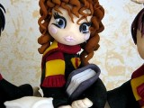 torta Harry Potter Hermione